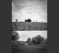 Dva horizonty nad rybníkem