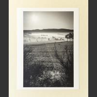 Údolí v mlze