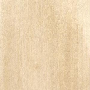 Řez dřevem, bříza