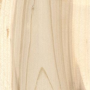 Řez dřevem, túje