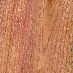 Řez dřevem, Slivoň Bluma